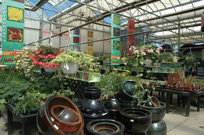 Successful operator profile a place to plant and play for Garden accessories canada