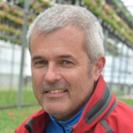 Rodd Gibson
