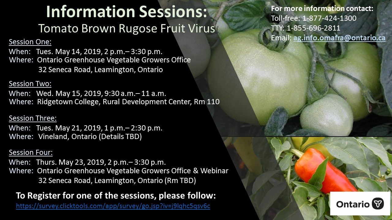 Tomato Brown Rugose Fruit Virus Info Sessions