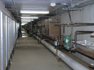 Heating pipes run from the boilers to Plant 5 via underground tunnels that transfer any heat loss to the greenhouse floor.