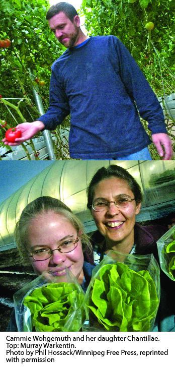 Similar Roots For Manitoba Growers Greenhouse Canada