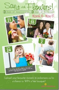 4623_pick_ont_brochure