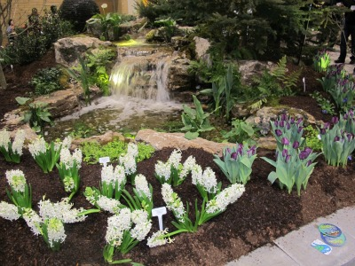 5668_water_big_theme_at_canada_blooms_2013