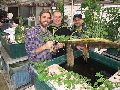 Aquaponics-leaders