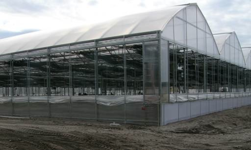 aris_greenhouses_fort_myers