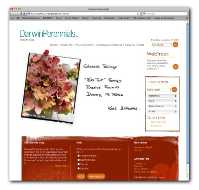 darwinperennials_website