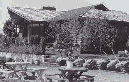 Greenland Garden Centre Celebrates 50 Years Greenhouse