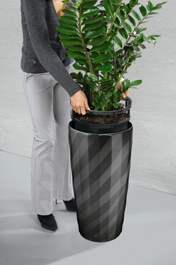 Self Watering Planter From Lechuza Greenhouse Canada