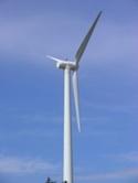 Feds initiate wind energy study