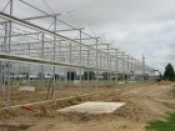 New energy-efficient greenhouse projects